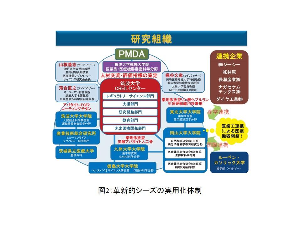 yanagi_zu2