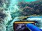 式根島でCO2シープ発見!-~温帯太平洋における海洋酸性化の影響評価のための大きな一歩~