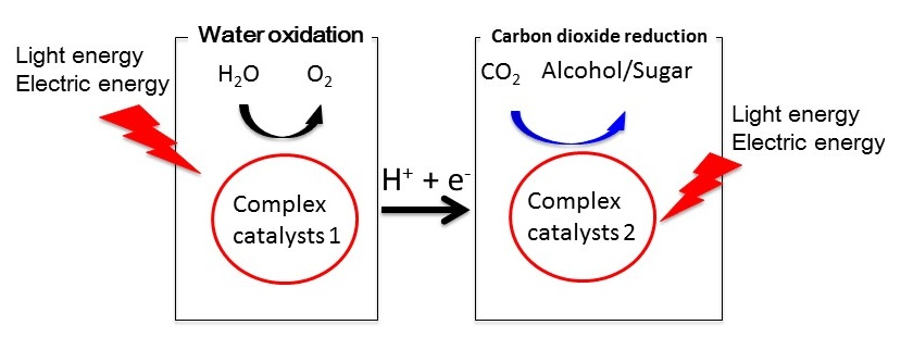 Figure 2: Water oxidation and carbon dioxide reduction using complex catalysts