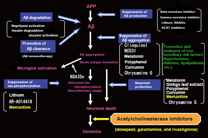 Figure 2: Amyloid cascade hypothesis and treatment strategy for Alzheimer's disease