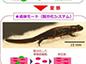 kenkyu_160330