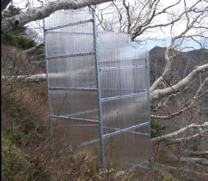 図1:温暖化実験(周囲より高温にして植物への影響を調べる)