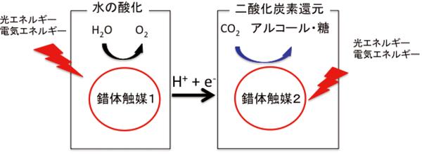 図2:錯体触媒による水の酸化と二酸化炭素の還元