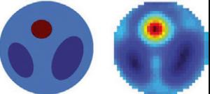 図1:体の断面に見立てた数理モデル。内臓    ( 紺)と腫瘍(赤)を含む。    右:逆問題の手法で推測