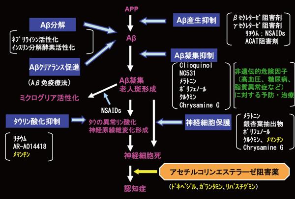 図2:アミロイドカスケード仮説とそれに基づくアルツハイ    マー病治療戦略