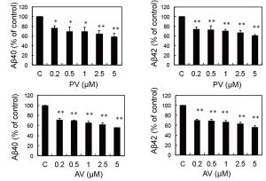 図3:スタチンによるA βの抑制    ( PV:ピタバスタチン、AV:アトロバスタチン) Hosaka A, et al. Neurochem Res, 38: 589-600, 2013.より引用