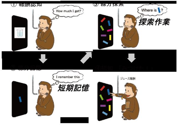 図1:サルに行わせた視覚探索課題